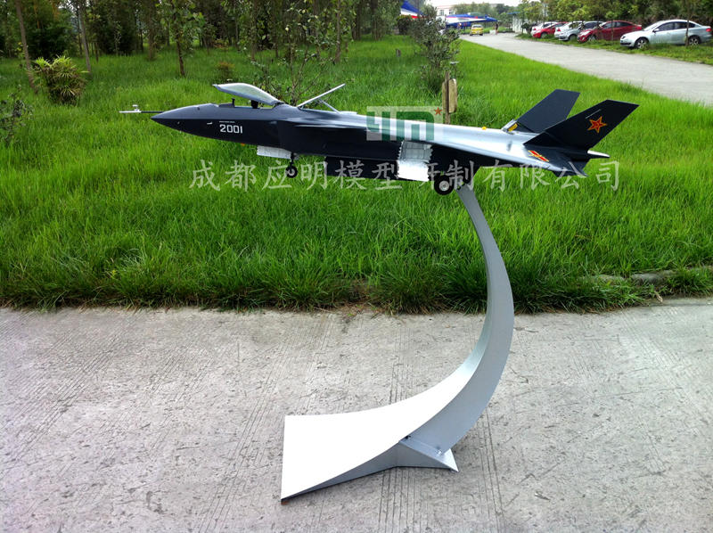 Shrinkage aircraft model-1:14歼-20战斗机模型